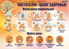 Правила личной гигиены рук